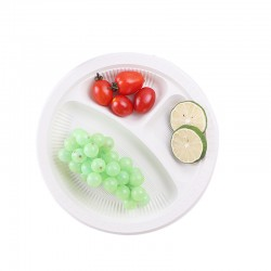 Biodegradable Corn Starch Plates