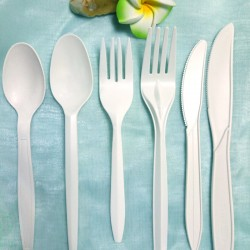 Biodegradable Disposable Cutlery Set