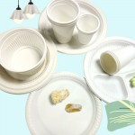 Biodegradable Disposable Plates
