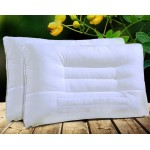 Cassia Seed Pillow 10pcs pack